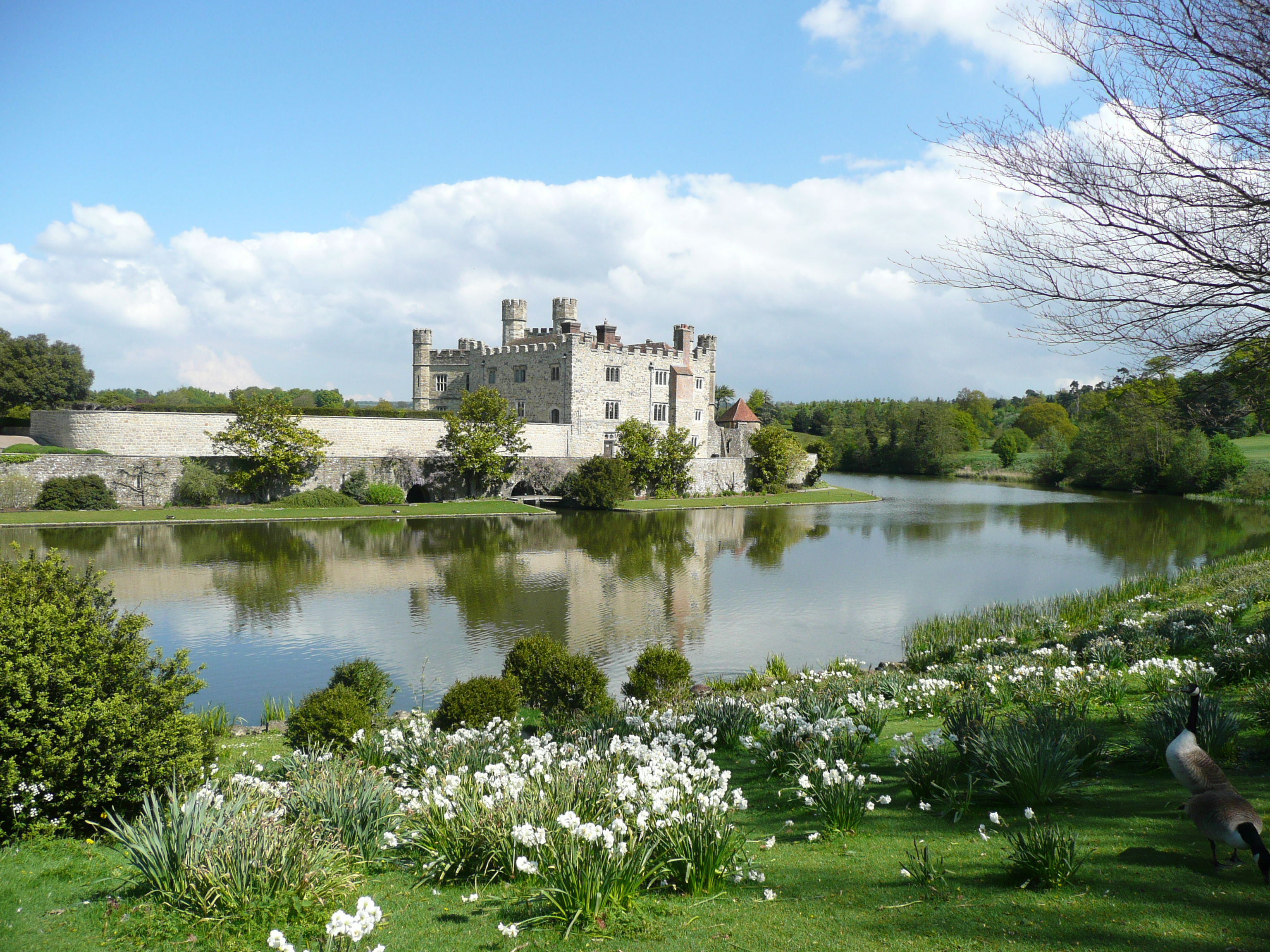 Photo of Leeds Castle in the background and the large mote surrounding it.